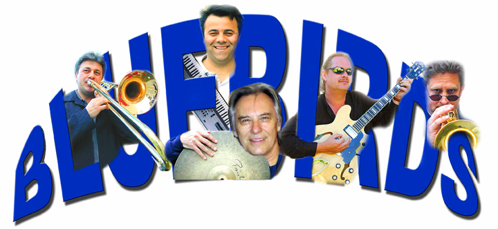 The Bluebirds Showband